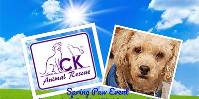 Spring Paw Event